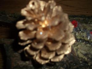 Décembre-2011-028-300x224