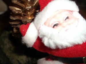 Décembre-2011-030-300x224